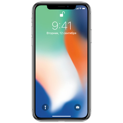 Apple iPhone X 64Gb (серебристый) :::