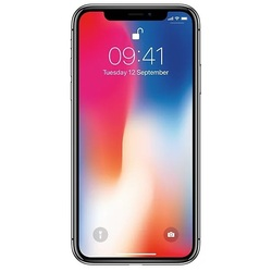 Apple iPhone X 256Gb (серый космос) :::